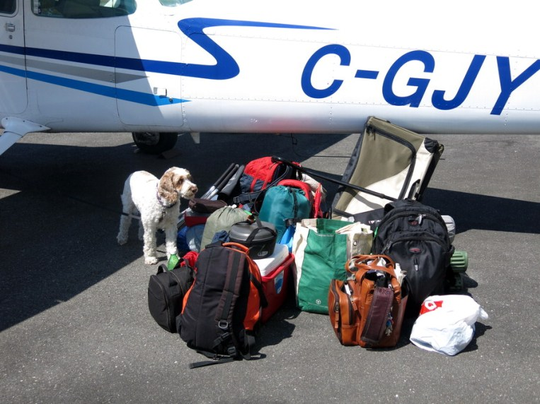 All gear, & dog & kennel