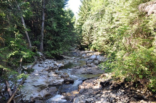 Chapman creek upper