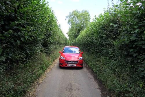 narrow lanes