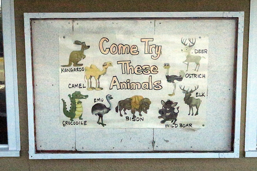 try these animals