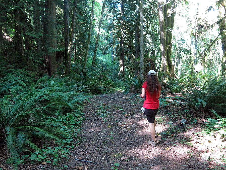 Trail from airport to Skagit River