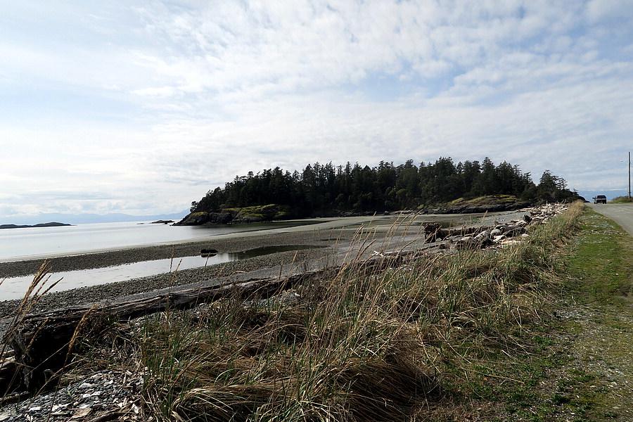 Dick's Island (2)