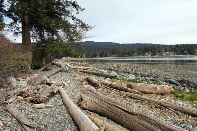 Dr. Sanderson Trail beach view